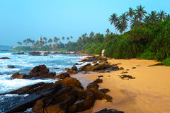 Sri Lanka. Ocean coast of Sri Lanka in the tropics Stock Photo