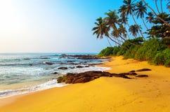 Sri Lanka Royalty Free Stock Photo