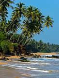 Sri Lanka. Ocean coast of Sri Lanka in the tropics Stock Photos