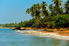 Sri Lanka. Ocean coast of Sri Lanka in the tropics Royalty Free Stock Photos