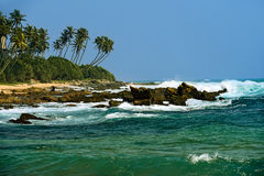 Sri Lanka. Ocean coast of Sri Lanka in the tropics Royalty Free Stock Image