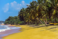 Sri Lanka Royalty Free Stock Photo