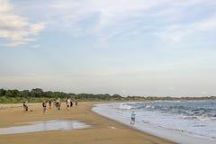 Golden Beach at Yala National Park royalty free stock image