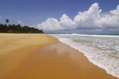 Sri Lanka: Praia Imagens de Stock Royalty Free