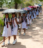 Sri Lanka school class on a trip. School class in white uniform on a school-trip in Sri lanka with umbrella's against the sun Royalty Free Stock Images