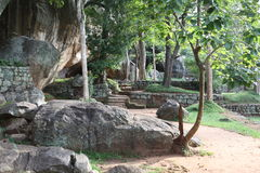 Sri Lanka - Sigiria tropiska stenar Royaltyfria Foton