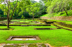 Sri Lanka. Sigirija, meadows,and verdant moss at the entrance of the Lion Rock archaeological site Royalty Free Stock Photo