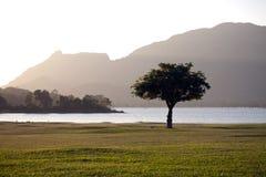 Sri Lanka Sunrise. View of the tree, lake and Sri Lanka sunrise Stock Images
