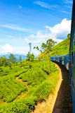 Sri Lanka Tea Plantation Hill Country Train Ride V Stock Photography