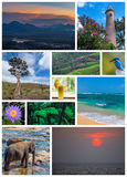 Sri Lanka travel collage royalty free stock photos