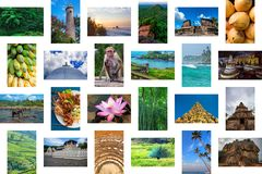 Sri Lanka travel concept collage royalty free stock images