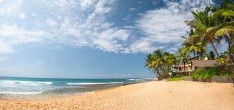 Sri Lanka. Tropical sandy beach with palm trees. Hikkaduwa, Sri Lanka stock photo