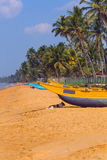 Sri Lanka, Wadduwa. The dog is lying in the shadow of the boat on the ocean Royalty Free Stock Photo