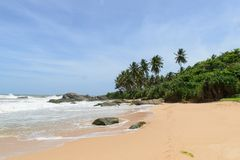 Sri Lanka. West Coast. Stock Photo