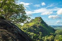 Sri Lanka wieś obraz royalty free