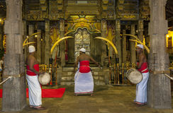 Sri Lankan drummers playing within the Temple of the Sacred Tooth Relic in Kandy, Sri Lanka. Royalty Free Stock Photography