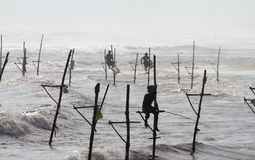 Sri lankan fisherman Royalty Free Stock Photography
