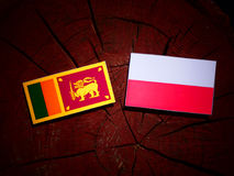 Sri Lankan flag with Polish flag on a tree stump isolated. Sri Lankan flag with Polish flag on a tree stump royalty free illustration