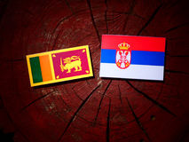 Sri Lankan flag with Serbian flag on a tree stump isolated. Sri Lankan flag with Serbian flag on a tree stump royalty free stock images