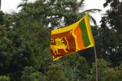 Sri Lankan flag Royalty Free Stock Images