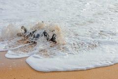 sri lankan na plaży Obraz Stock