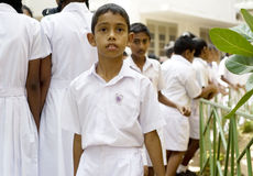 Sri Lankan pupil Stock Photo