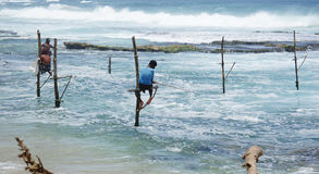 Sri Lankan Standing fishing Stock Photo