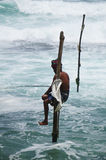 Sri Lankan Standing fishing Stock Images