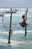Sri Lankan Standing fishing Royalty Free Stock Photo