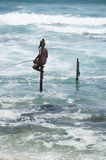 Sri Lankan Standing fishing Royalty Free Stock Photography