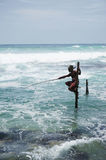 Sri Lankan Standing fishing Royalty Free Stock Photos