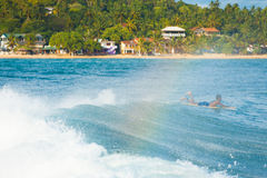Sri Lankan Surfer Paddling Over Wave Unawatuna Stock Photography