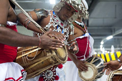 Sri Lankan traditional musicians Royalty Free Stock Photography