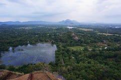 Sri Lankan Wetland Stock Images