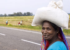 Sri Lankan woman Stock Images