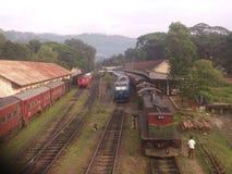 Sri lanki Badulla pociąg zdjęcie royalty free