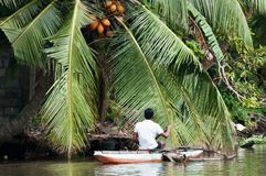 Sri Lankian fisherman in a boat on a river Stock Image