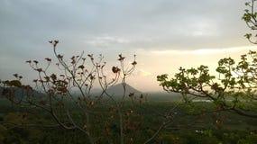 Sri-lnka Beschaffenheit des Landes lizenzfreie stockfotografie