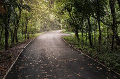 Bicycle way with sun light in Thailand. Sri Nakhon Khuean Khan Park and Botanical Garden, The lungs of Bangkok in Samut Prakan, Thailand Royalty Free Stock Image