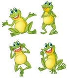 Série de grenouille Image libre de droits