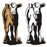 Série ocidental da ilustração Imagem de Stock