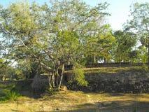 THIS IS IMAGE BEAUTIFUL YAPAHUWA ROCK FORTRESS OF SRI LANKA stock photography