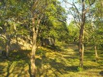 THIS IS IMAGE BEAUTIFUL YAPAHUWA ROCK FORTRESS OF SRI LANKA royalty free stock photos