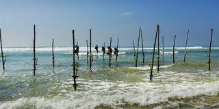 Srilankan fisherman sitting on stick of wood. Srilankan fisherman fishing sitting on stick of wood royalty free stock image