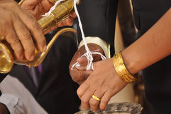 Srilankan wedding Stock Image