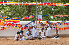 Srilankesiska kvinnor ber på den buddistiska templet Arkivbilder