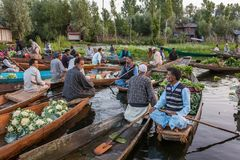 Unidentified vegetable sellers taking their produce to the floating market early in the morning on Dal Lake in Srinagar, Kashmir. stock image