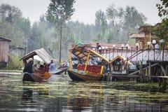 SRINAGAR, LA INDIA - 17 DE OCTUBRE DE 2013: Forma de vida en el lago Dal, lugares geométricos Imagen de archivo libre de regalías