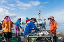 Sriracha Chonburi, THAILAND - Augusti 2014: Royaltyfria Bilder