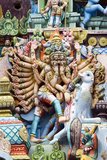 Srirangam - Tamil Nadu - Indien Royaltyfria Foton